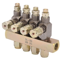 Series SL Grease Injectors dispense measured, multiple shots of grease simultaneously in one area, in an Automotive Parts Supplier Manufacturing Facility